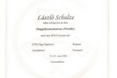 diploma_ifsl_13