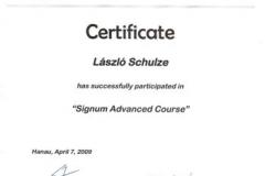 diploma_ifsl_15
