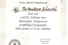 diploma_ifsl_2