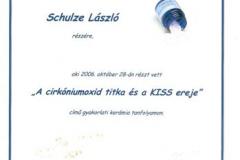 diploma_ifsl_3