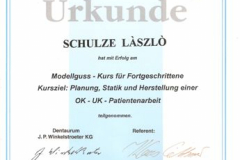 diploma_ifsl_8