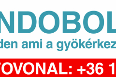 endobolt