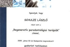 diploma_idsl_12
