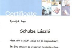diploma_idsl_17