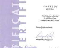 diploma_idsl_18
