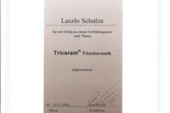 diploma_idsl_19