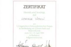 diploma_idsl_24